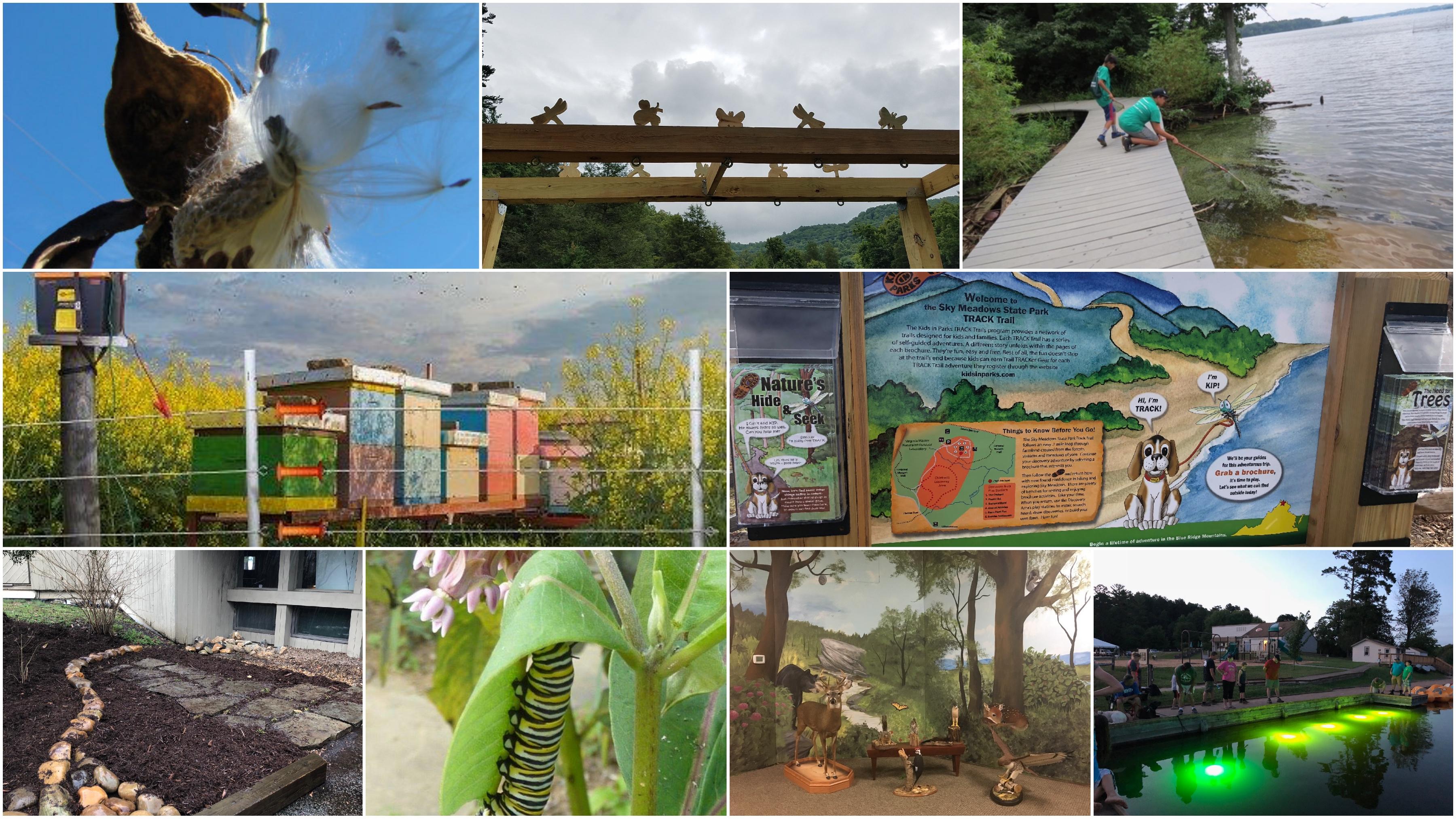 Virginia State Parks on garden club underwater designs, blue ribbon garden club designs, garden club flower show designs,
